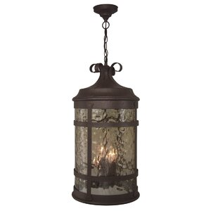 Oakhill 4-Light Outdoor Hanging Lantern