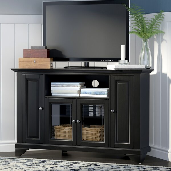 Sneyd Park 48 TV Stand by Darby Home Co