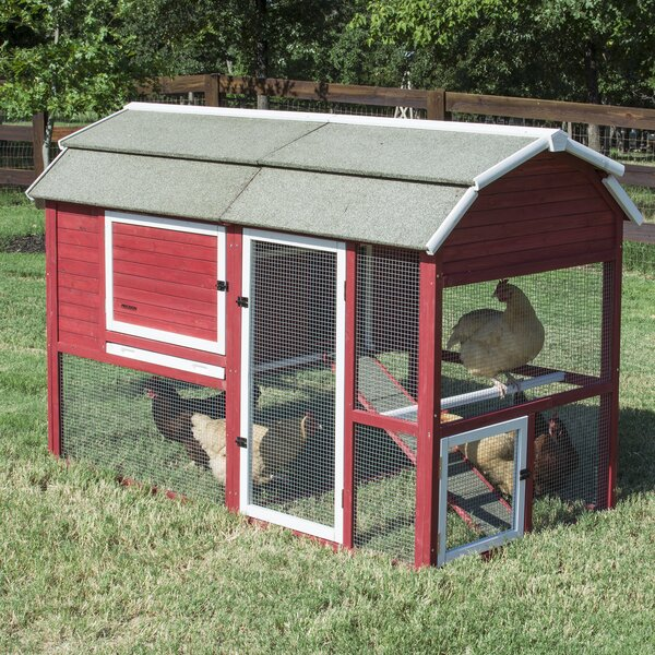 Old Barn II Chicken Coop by Precision Pet Products