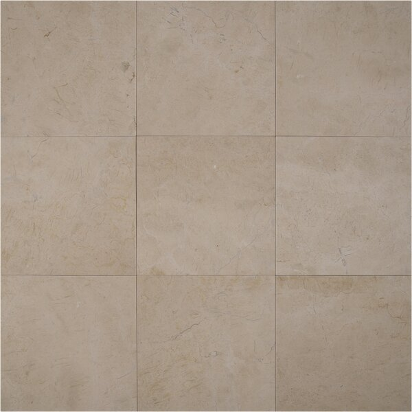 Marfil 12'' x 12'' Marble Field Tile in Crema by MSI