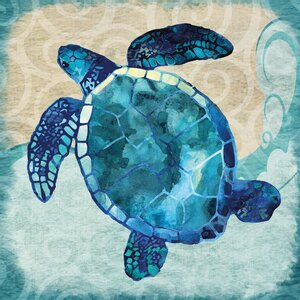 Blues Sea Turtle by Jill Meyer Painting Print on Wrapped Canvas by Portfolio Canvas Decor