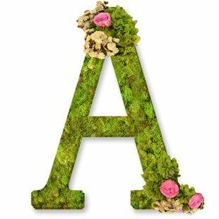 Monogram Letter A 12  Moss Wreath  sc 1 st  Wayfair & Monogram Front Door Letters   Wayfair