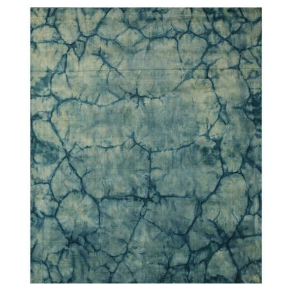 Jagtial Hand-Woven Blue Area Rug by Meridian Rugmakers