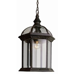 Sarah 1-Light Outdoor Hanging Lantern