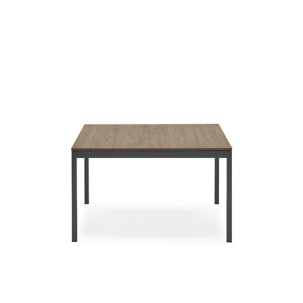 Thanos Extendable Dining Table by Ebern Designs