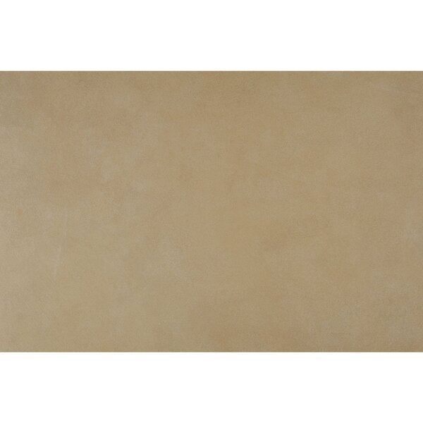 Hampstead 13 x 20 Porcelain Field Tile in Sand by Itona Tile