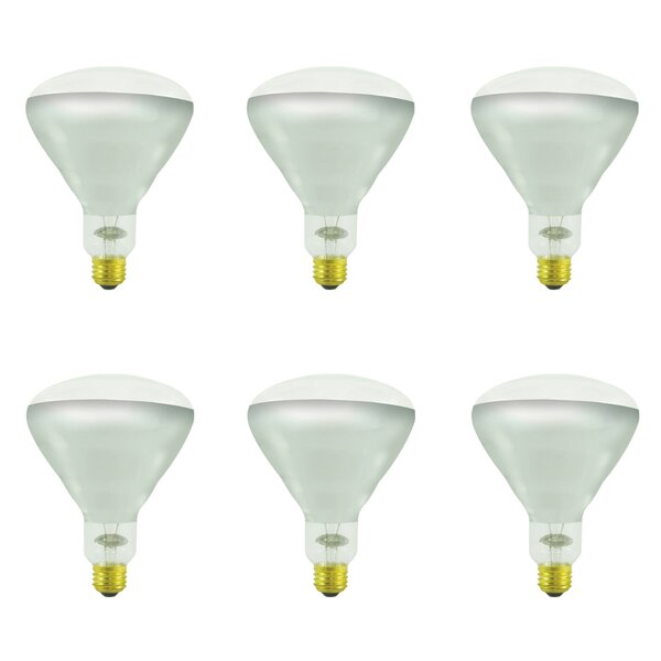 250W E26 Dimmable Incandescent Light Bulb (Set of 6) by Bulbrite Industries