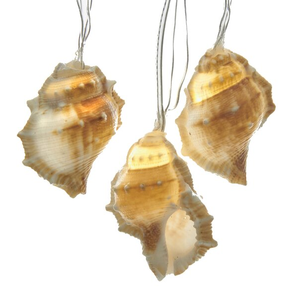 Natural Seashell String Lights by Kurt Adler