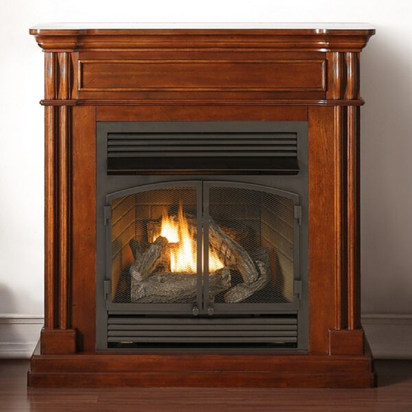Vent Free Propane/Natural Gas Fireplace by Duluth Forge Duluth Forge
