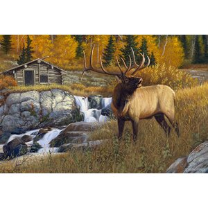 'The Ranger' Graphic Art Print on Museum Wrapped Canvas by Reflective Art