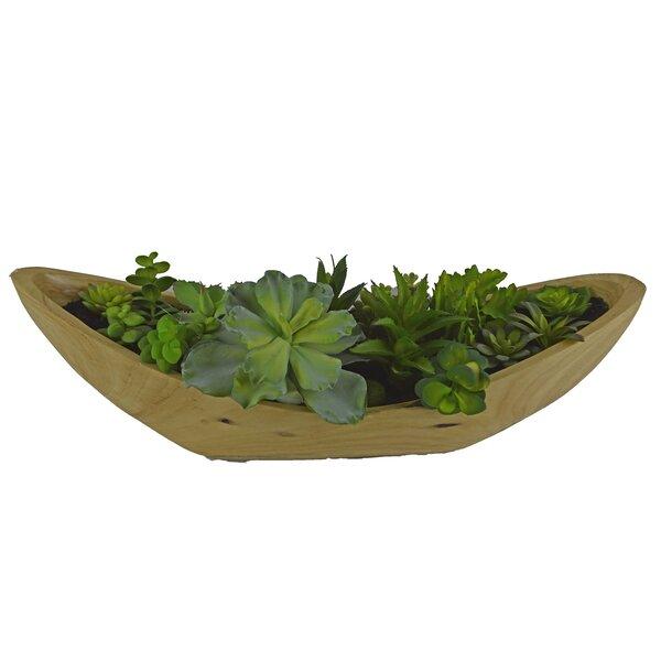 Desktop Succulent Plant in Wooden Pot by Brayden Studio