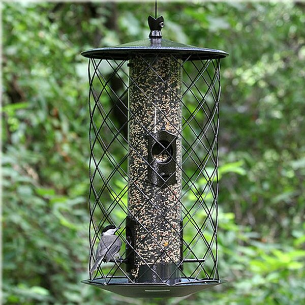 The Preserve Caged Tube Bird Feeder by Birdscapes