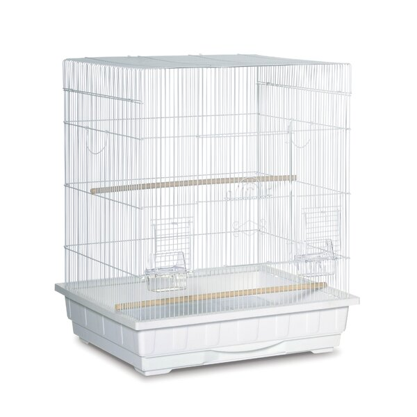 Square Top Parakeet  Bird Cage by Prevue Hendryx
