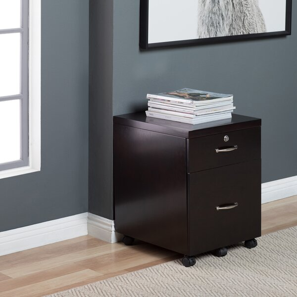 Whittington Wood 2-Drawer Vertical Filing Cabinet with Lock by Symple Stuff