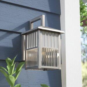 Orangeville 1-Light Outdoor Wall Lantern