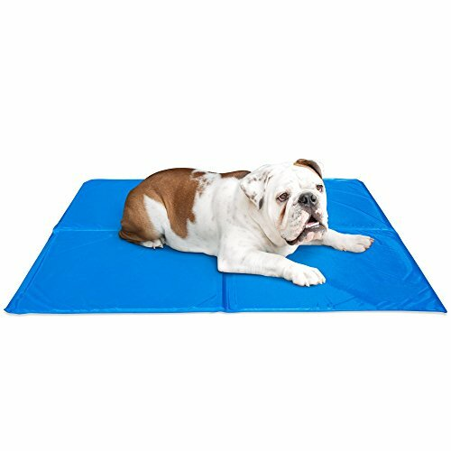 Jonathon Bed Pet Cooling Mat by Tucker Murphy Pet