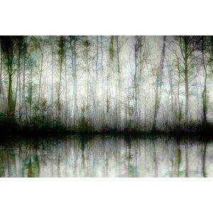 'Wispy Trees Reflect' by Parvez Taj Graphic Art Print on Wrapped Canvas by Parvez Taj
