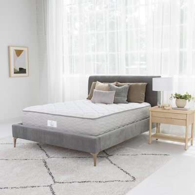 Serta Suite?Dreams 12 Plush Innerspring Mattress Destination Home by Hilton Mattress Size: Full