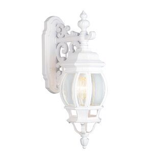 Find the perfect Talon 1-Light Outdoor Wall Lantern By Astoria Grand