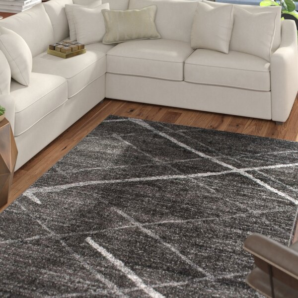 Mcphee Machine Woven Gray Area Rug by Mercury Row