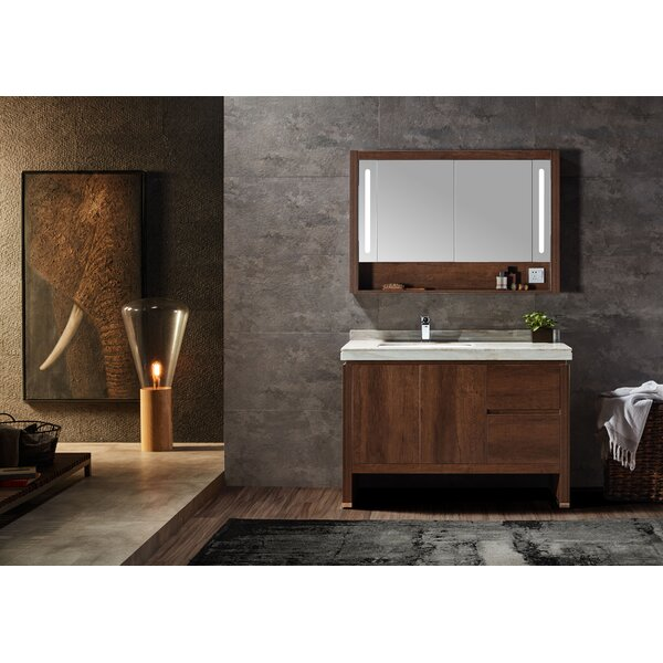 Adamson 48 Single Bathroom Vanity Set with Mirror by Brayden Studio