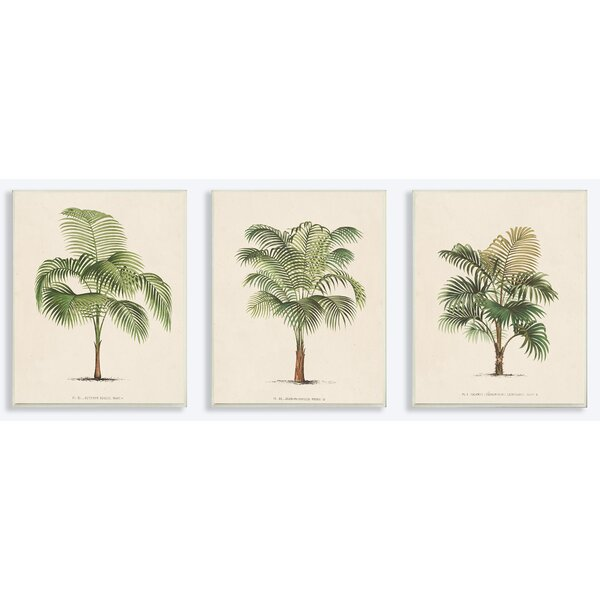 Les Palmiers Botanical Trio 3 Piece Painting Print Wall Plaque Set by Stupell Industries