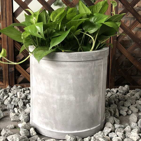 George Cylinder Pot Planter by Williston Forge