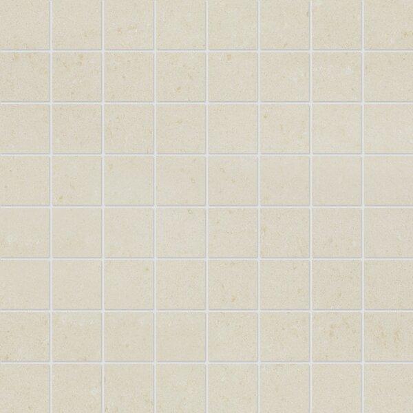 1.5 x 1.5 Porcelain Mosaic Tile in Matte Vanilla by Parvatile