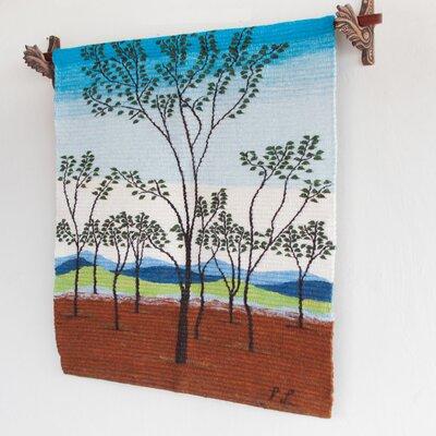 Andes Tapestry Novica