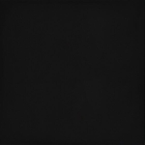 Times Square 12 x 12 Porcelain Field Tile in Polished Black by Emser Tile