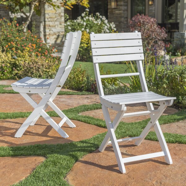 Carthage Folding Patio Dining Chair (Set of 2) by Zipcode Design