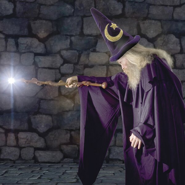 Ultimate The Wizard Wall Mural by Brewster Home Fashions