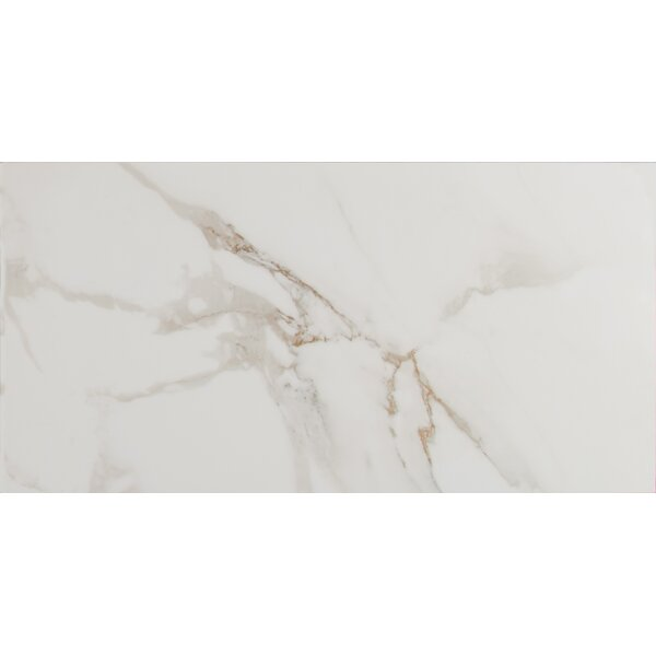 Pietra Carrara 12 x 24 Porcelain Field Tile in White by MSI