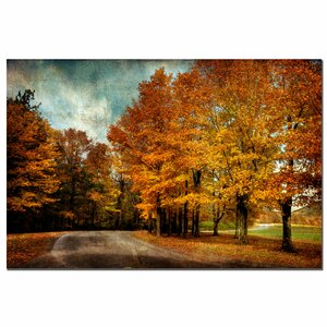 Autumn Scene' by Lois Bryan Photographic Print on Canvas by Trademark Fine Art