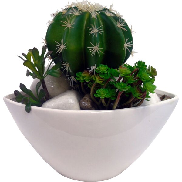Faux Cactus Mix Desk Top Plant in Planter by Creative Branch