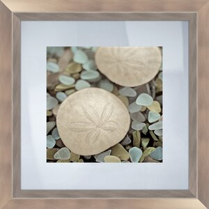 'Sea Glass Sand Dollar' Framed Photographic Print by Beachcrest Home