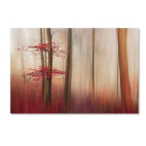'Red Leaves' Photographic Print on Wrapped Canvas by Trademark Fine Art