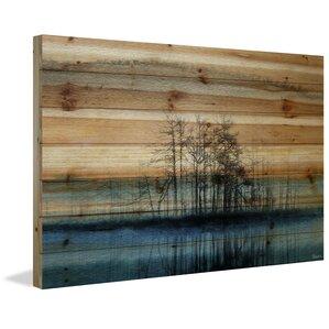 Wood Plank Wall Art wood wall art you'll love | wayfair