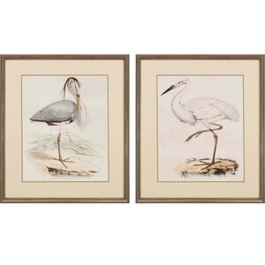 Antique Herons by Anonymous  2 Piece Framed Painting Print Set (Set of 2) by Paragon