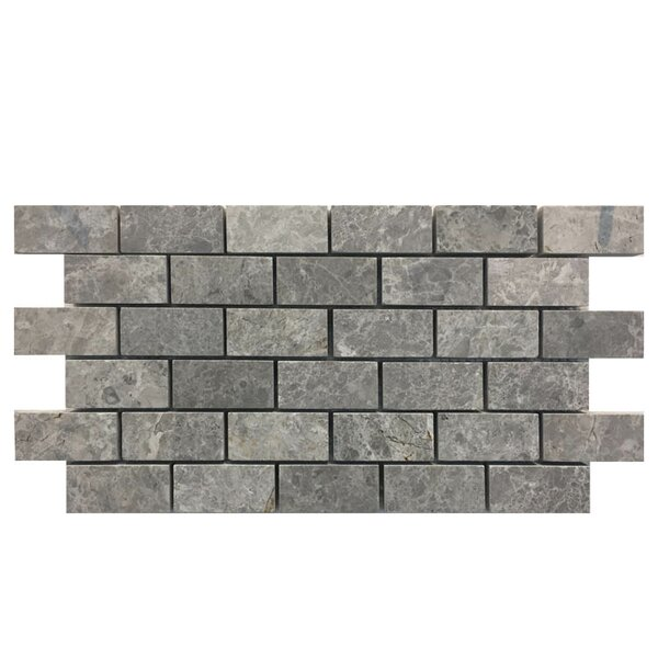 Polished 1 x 2 Marble Mosaic Tile in Gray