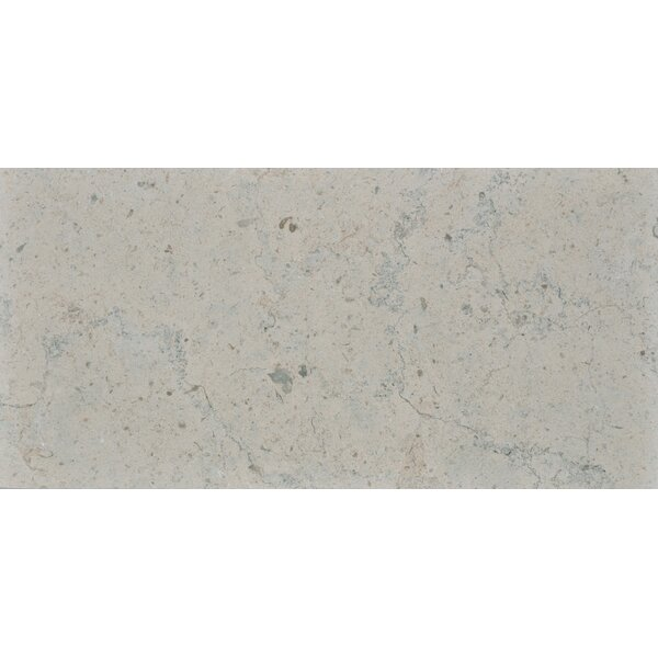 Duvel 12 x 24 Limestone Field Tile in Gray by The Bella Collection