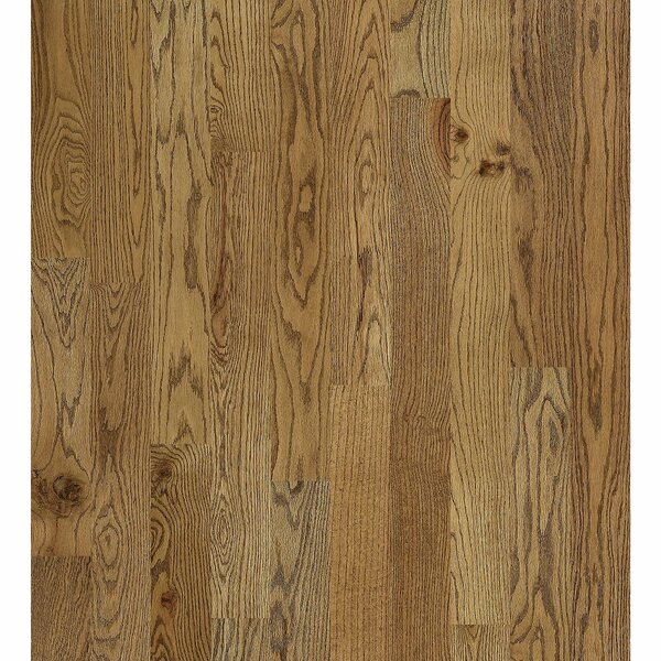 Inglewood Oak 5 Solid Oak Hardwood Flooring in Lena by Shaw Floors