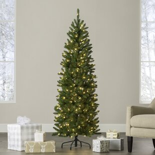 kingswood pencil 6 green fir artificial christmas tree with 200 clear lights - Real Looking Artificial Christmas Trees