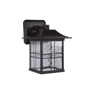 Big Save Sanderson 1-Light Outdoor Wall Lantern By Darby Home Co