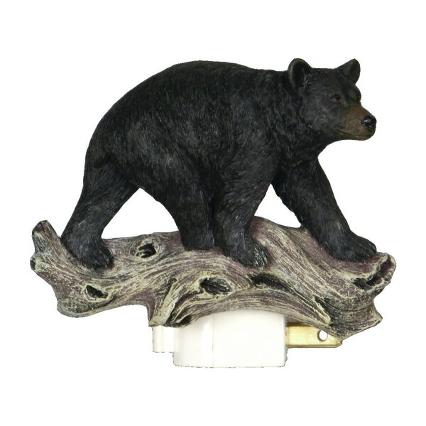 Bear 3D Night Light by American Expedition
