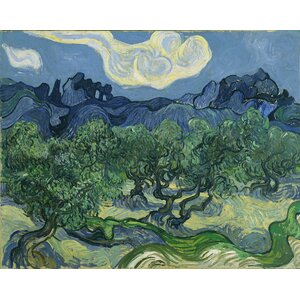 'Olive Trees,1889' by Vincent Van Gogh Painting Print on Wrapped Canvas by Buy Art For Less