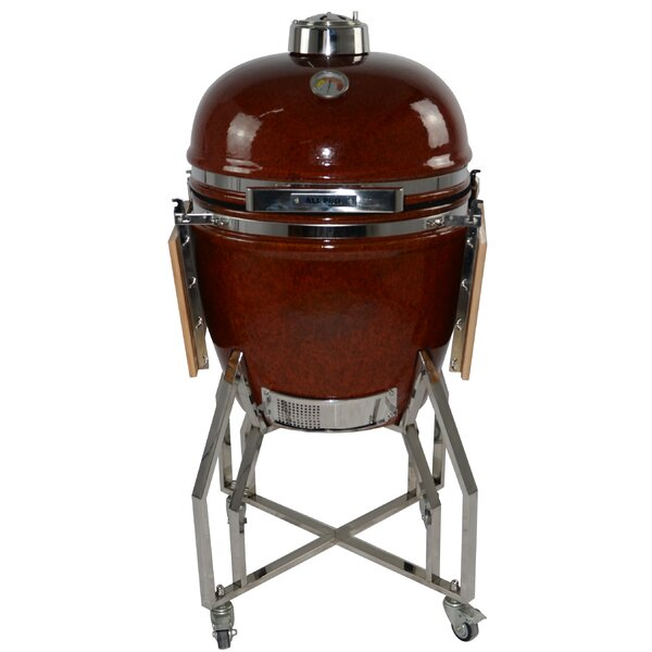 19 Kamado Charcoal Grill by All-Pro