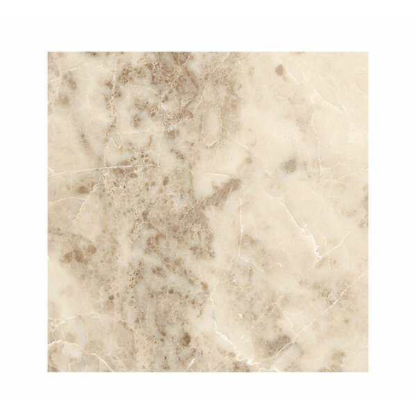 18 x 18 Marble Field Tile in Cappuccino Polished by Parvatile