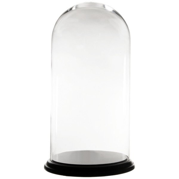 Dome Bell Jar Glass Terrarium by CYS-Excel