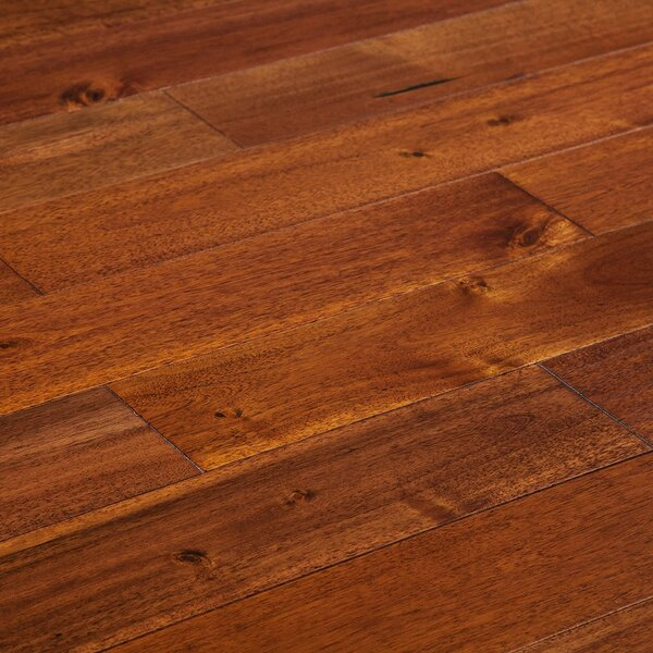 Loganne Random Width Solid Acacia Hardwood Flooring in Smooth Rooibos Red by Welles Hardwood